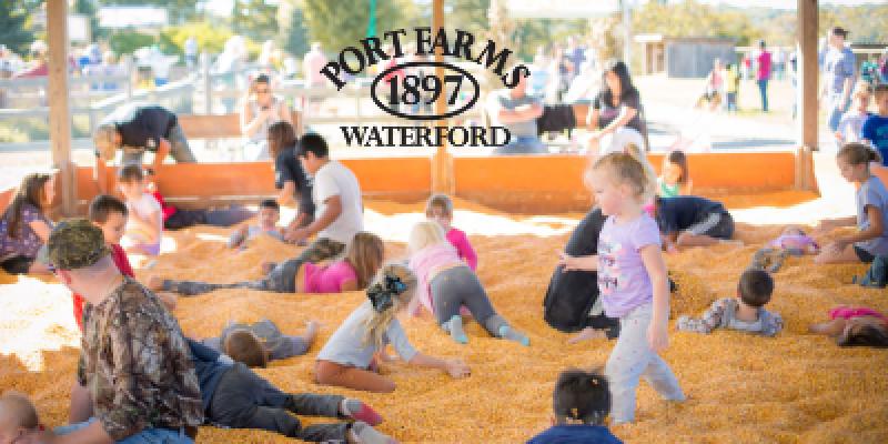 Fall Harvest at Port Farms September 18th - October 31st.